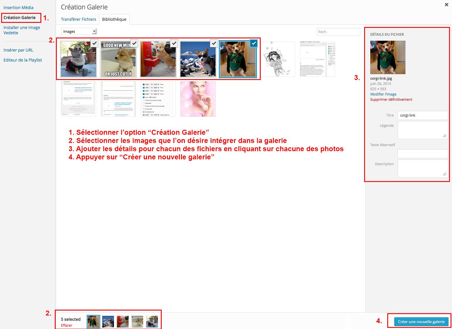 Étape 07 - Insérer une galerie d'images