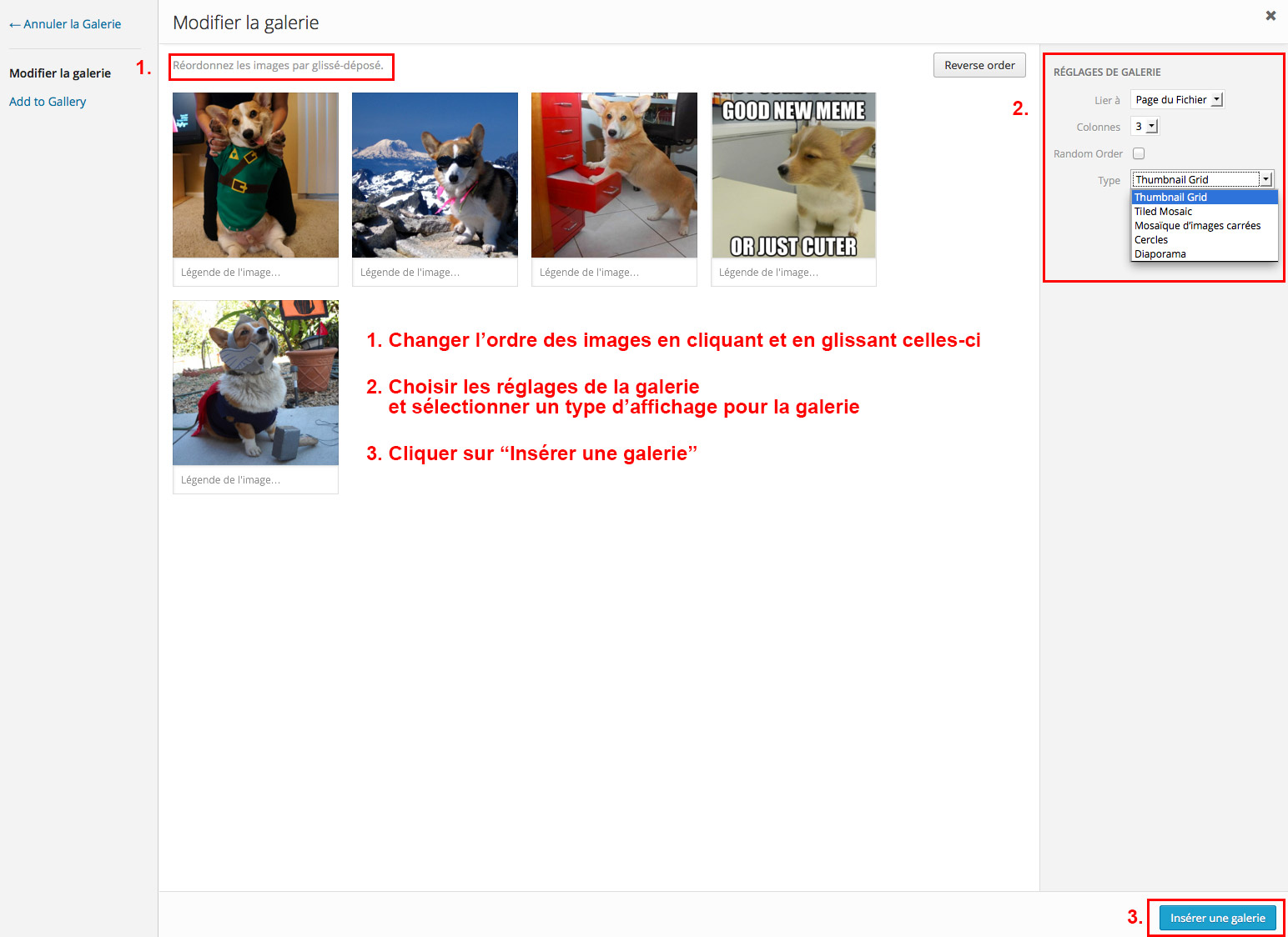 Étape 08 - Insérer une galerie d'images